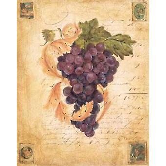 Een rijke oogst II Poster Print by Liz Jardine