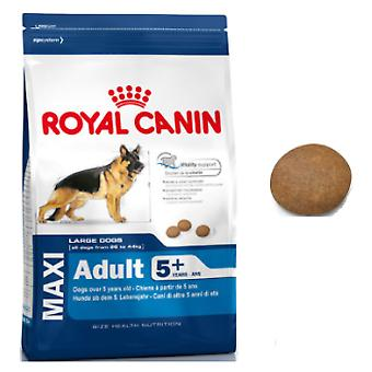 Royal Canin Maxi Adult 5+ (Honden , Voeding , Droogvoer)
