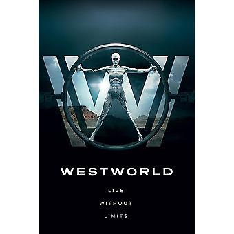 Westworld poster leven zonder grenzen