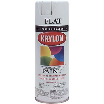 Indoor Outdoor Aerosol Paint 12 Ounces Flat White 1000A 1502