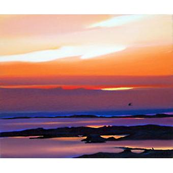 Pam Carter print - Sunset and Flight