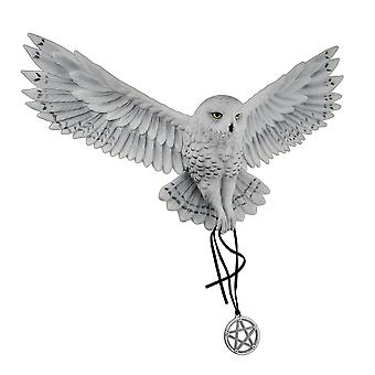 Anne Stokes Awaken Your Magic Snowy Owl with Pentagram Pendant Wall Sculpture