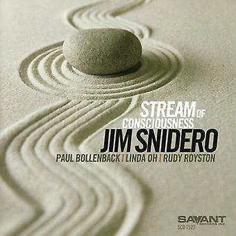 Jim Snidero - Stream of Consciousness [CD] USA import