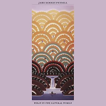 Jake Xerxes Fussell - hvad i den naturlige verden [CD] USA import