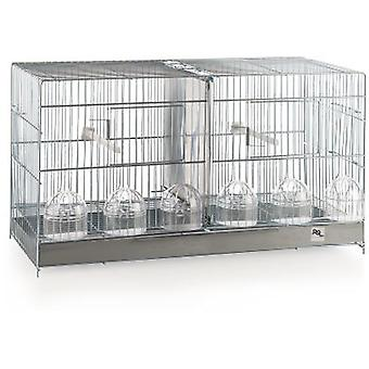 RSL Cage Ref. 1402 Cria Zincada (Birds , Cages and aviaries , Cages)