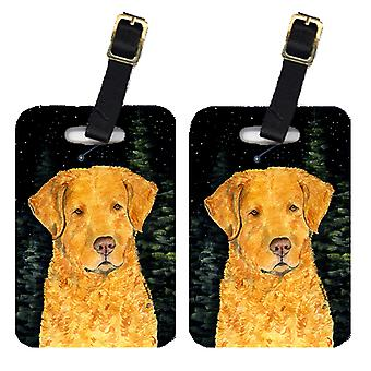 Starry Night Chesapeake Bay Retriever bagage Taggar par 2