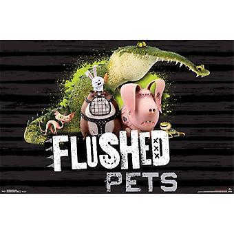 Secret Life of Pets - Flushed Poster Poster Print