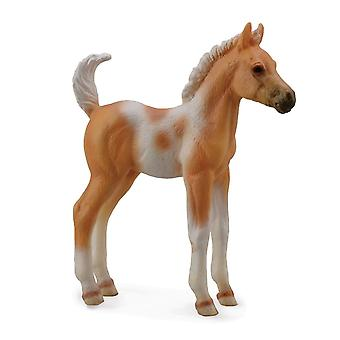 Pinto Foal Standing Palomino