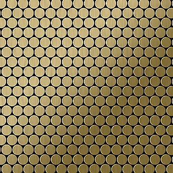 Metal mosaic Titanium ALLOY Penny-Ti-GB