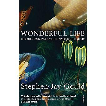 Wonderful Life: Burgess Shale en de aard van de geschiedenis