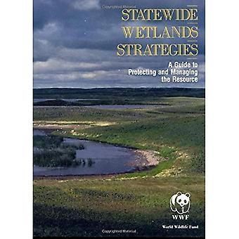 Statewide Wetlands Strategies : A Guide to Protecting and Managing the Resource