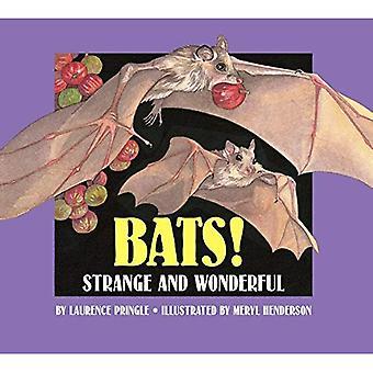 Bats! Strange and Wonderful
