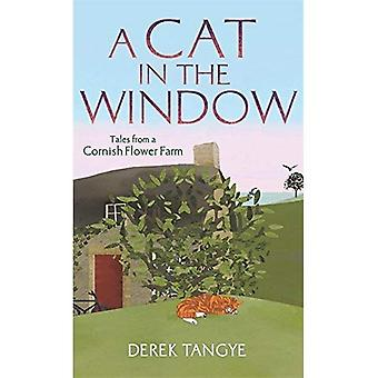 A Cat in the Window: Tales from a Cornish Flower Farm (Minack Chronicles)