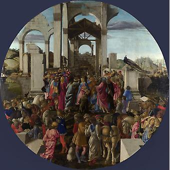 Adoration of the Kings, Sandro Botticelli, 50x50cm