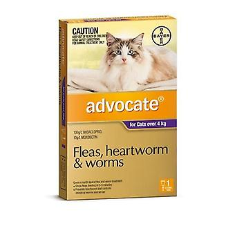 Advocate 1 Pack Large Cat over 4kg
