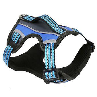 2 X-Sport Harness blau