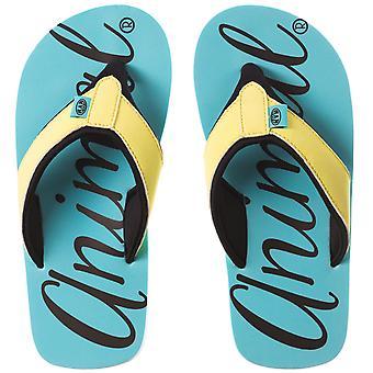 Djur Infant flickor barn barnens Swish logotyp sommar Flip Flops sandaler - blå