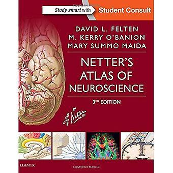 Atlante Netter di neuroscienze, 3e (Netter scienza di base)
