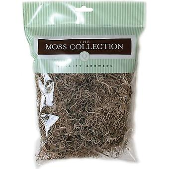 Preserved Spanish Moss 108.5 Cubic Inches Natural Qg1500