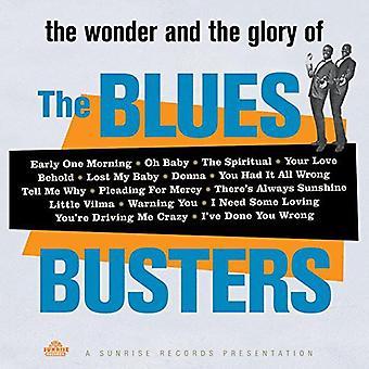 Blues Busters - Wonder & herlighed af Blues Busters [Vinyl] USA importen