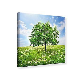 Canvas Print The Tree
