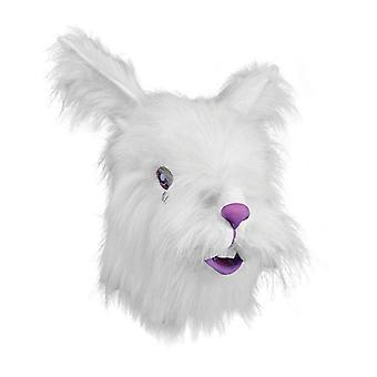 Rabbit Mask + White Fur.