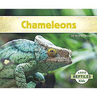 Chameleons by Grace Hansen - 9781496610256 Book