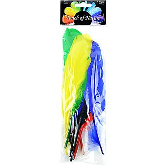 Indian Feathers 12/Pkg-Assorted Colors MD38215