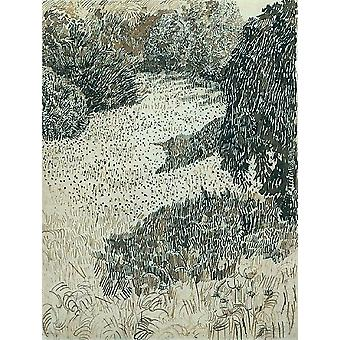 Vincent Van Gogh - The Corner of the Park, 1888 Poster Print Giclee