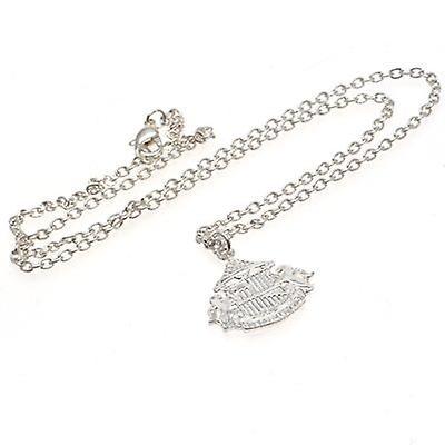 Sunderland Silver Plated Pendant & Chain