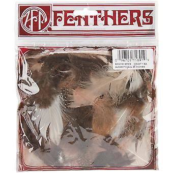 Feather Spice Mix Guinea Hen Biots Satinettes Coquille Bk321