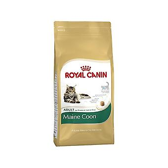 Royal Canin Cat Food Maine Coon 31 droge Mix 400 g