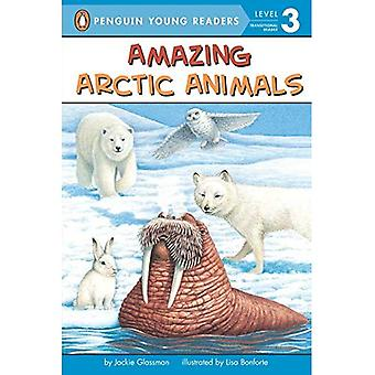 Amazing Arctic Animals (All Aboard Science Reader: Level 2)