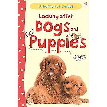 Huolehtia koirien & pennut (Pet-oppaat)
