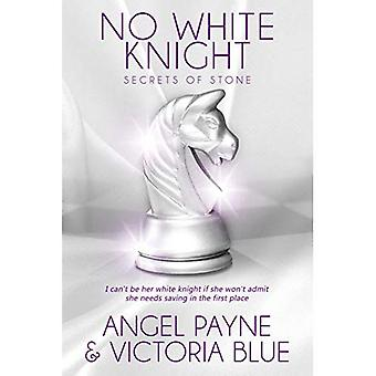No White Knight: Book 8 of the Secrets of Stone series