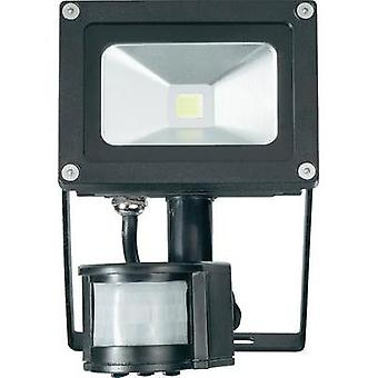 LED outdoor floodlight (+ motion detector) 10 W Cold white TL-F