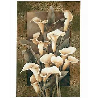 Golden Calla Lilies Poster Print by Linda Thompson