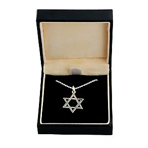 Silver 21x17mm plain Star of David Pendant with a rolo Chain 16 inches Only Suitable for Children