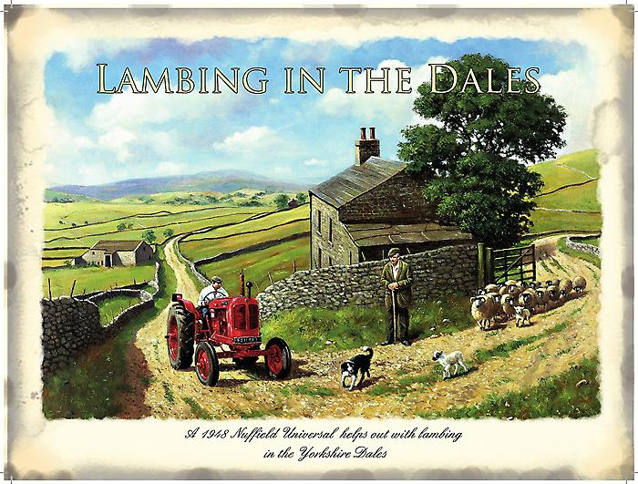 Lambing In The Dales metal sign  (og3040)