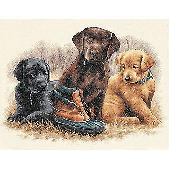 Chew Toy Counted Cross Stitch Kit 14