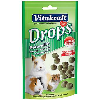 Vitakraft Small Animal Sugar & Lactose Free Parsley Drops 75g (Pack of 9)