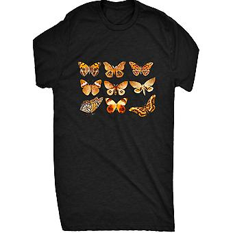 Renowned Assorted Butterfly Collection 2