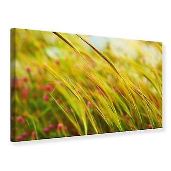 Canvas Print The Wheat Field