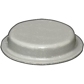 TOOLCRAFT PD2024G pied circulaire, autocollant gris (Ø x H) 19 x 4 mm 1 PC (s)