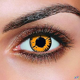 New Moon Contact Lenses (Pair)