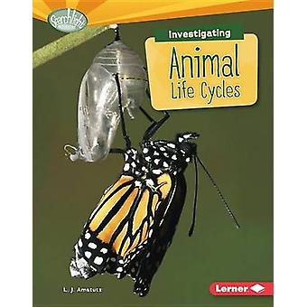 Investigating Animal Life Cycles by Lisa J Amstutz - L Amstutz - 9781
