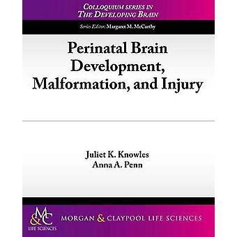 Perinatal Brain Development - Malformation - and Injury by Juliet K.