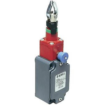 Pull cord switch 250 Vac 6 A Pull cord momentary P