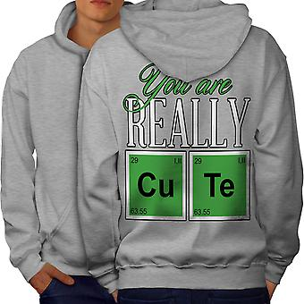 Cute Chemistry Geek Men GreyHoodie Back | Wellcoda