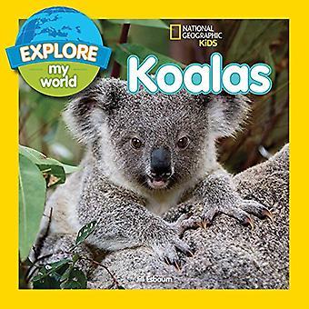 Mijn wereld Koala's verkennen